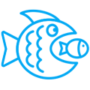 kreacja-i-branding_oferta